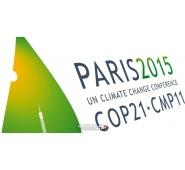 Chống biến đổi khí hậu toàn cầu?